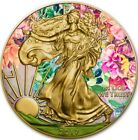 2016 1 Oz Silver 1 AMERICAN EAGLE AT SUMMER Coin WITH 24K GOLD GILDED