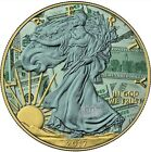 2017 1 Oz Silver AMERICAN EAGLE DOLLAR CoinWITH 24K Gold Gilded