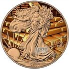 2017 1 Oz Silver American Eagle GOLD Coin WITH 24k Gold Gilded