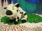 TY Beanie Babies -  STUBBY the Pig no hang tag