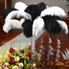 20PCS Wholesale Natural Ostrich Feathers 12 14 Wedding Party Decor White