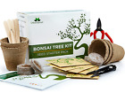 Bonsai Tree Kit Grow Your Own Trees from Seeds Gardening Gift Set Includes