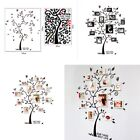 DIY Family Tree Wall Decal Sticker Large Vinyl Photo Picture Frame Removable US
