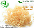 ® Whole Leaf Irish Moss Sea Moss 1 lb | Raw WildCrafted Superfood-16 Oz