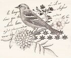 Bird Collage K5503 HERO ARTS RUBBER STAMP 375 x 3 w m Free Shipping NEW