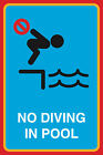 No Diving In Pool Print Swimming Water Notice Safety Pool Sign- 4 Pack, 12x18