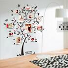 Removable Family Photo Frame Tree Sticker Living Room Wall Decals DIY wallpaper