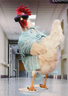 Rooster Hospital Gown Avanti Funny Humorous Get Well Card