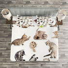 Cat Quilted Bedspread  Pillow Shams Set Funny Playful Cats Image Print