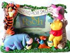 Disney Classic Winnie The Pooh  Friends Picture Frame Nursery Decor