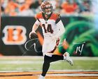 Andy Dalton Cards, Rookie Card Checklist and Autographed Memorabilia Guide 66