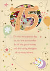 Very Special Day Sequin Filled Die Cut Window Age 75 75th Birthday Card