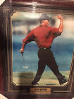 Tiger Woods Rookie Cards and Autographed Memorabilia Guide 73