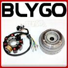 8 Poles Magneto Stator Roller Flywheel 250cc Engine PIT Trail Quad Dirt Bike ATV
