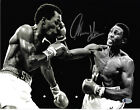 2835127031704040 1 Boxing Photos Signed