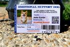 EMOTIONAL SUPPORT CARD CAT DOG ANIMAL ESA SERVICE CARD Customized 2019