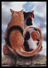 515 MSA John Lund CALICO CAT KITTEN Anniversary Greeting Card NEW