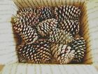 Pine Cones from Georgia Pines 25 cones per box Approx 4 tall and 3 base wide