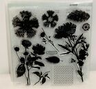 CTMH PAPER GARDEN Wildflowers Flowers Floral Clear Rubber Stamps Set