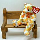 TY Beanie Baby Shasta The  Bear With Tag Retired   DOB: May 23rd, 2003