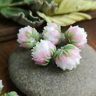Handmade Murano Glass Lampwork Beads SET 5pcs Clover Flowers Beads FREE SHIPPING