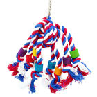 Hanging Standing Swing Colorful Bird Training Parrot Chew Toy Pet Supplies