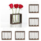 5x Glass Test Tube Vase Flowers Plants Hydroponic Planter Wood Stand 3 Tube