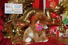 TY 2.0 BEANIE BABY MIDAS THE LION-6
