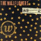 Bringing Down the Horse by The Wallflowers (US) (CD, May-1996, Interscope (USA))