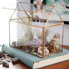 Glass Terrarium Container Geometric Succulent Planter Home Flower Pot Decoration