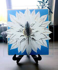 Stained Glass White Flower Glass Panel ON SALE
