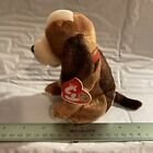 Ty Beanie Baby HOLMES the Bloodhound Beanie of the Month Feb 2003 MWMT