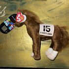 Ty Beanie Baby ~ SMARTY JONES Kentucky Derby Race Horse Store Excl. w/ EXTRA TAG