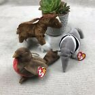 TY Beanie Babies Early Robin Ants Anteater hoofer horse - Lot Of 3