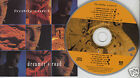 FREDDY CURCI Dreamer's Road (CD 1994) Rare Canada Album 11 Songs FREE SHIPPING
