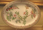 RARE Antique ROYAL COPENHAGEN Flora Danica 19