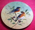 WS George Glorious Songbirds (Bluebirds in a Blueberry Bush) 8 1/2