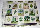 Beautiful Arbor Day Waverly Upholstery Fabric 5 Yards price-4-all NEW Home decor