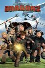 HOW TO TRAIN YOUR DRAGON 2 MOVIE POSTER MOUNTAIN CAST 24x36 Cartoon Toothless