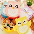 Cute Owl Healthy Microwave Bento Box Lunch meal Container