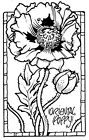 Unmounted Rubber Stamps Flowers Oriental Poppies Flower Stamp Poppy Frame
