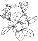 Unmounted Rubber Stamp Flowers Floral Stamps  Magnolia Botanicals Nature