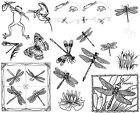 Unmounted Rubber Stamps Sheets Dragonfly Dragonflies Frog Nature Butterfly