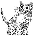 Unmounted Rubber Stamps Art Stamps Feline Cat Stamps Cats Lil Kitty Stamp