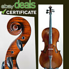 Old French cello Marc Laberte, ca 1910, with certificate