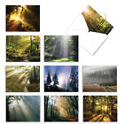 M1735BN Shining Through 10 Assorted Blank All Occasion Note Cards Envelopes