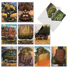M6729OCB Tree House Dreams 10 Assorted Blank All Occasion Note Cards Envelopes
