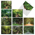 M6467TYG Nature Trails 10 Assorted Thank You Note Cards Envelopes card