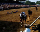 Ron Turcotte signed riding Secretariat Preakness Color 8x10 Photo Steiner Holo