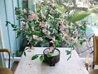 Vintage large 30 Pink Green Glass Jade Bonsai